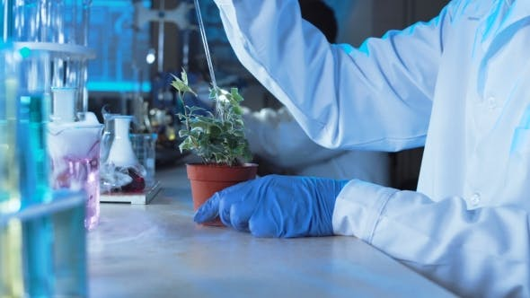 Thumbnail for Chemist Doing Tests in a Laboratory