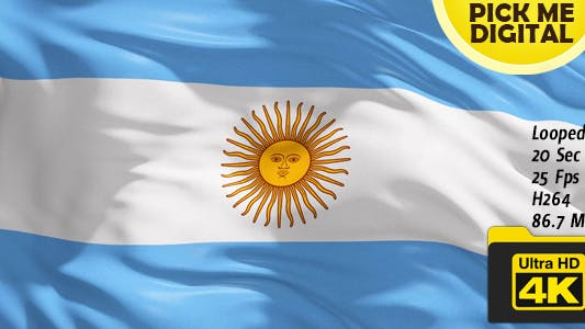 Thumbnail for Argentina Flag 4K