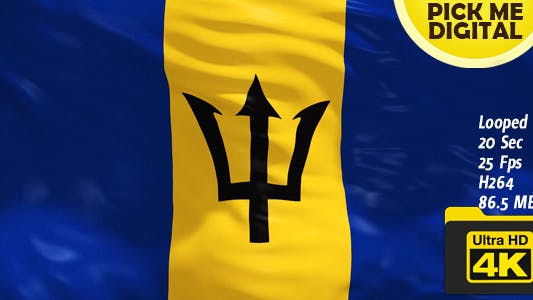 Thumbnail for Barbados Flag 4K