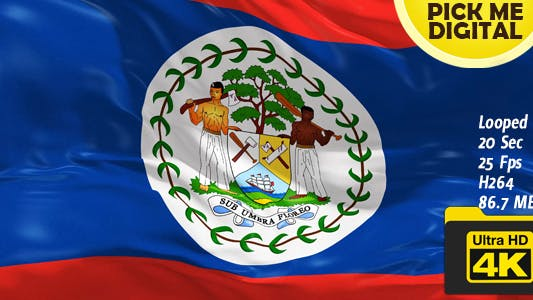 Thumbnail for Belize Flag 4K