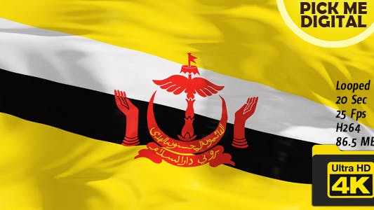 Thumbnail for Brunei Flag 4K