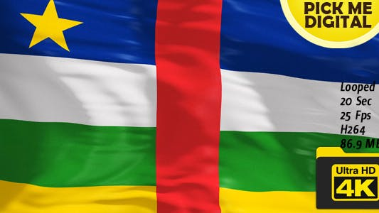 Central African Republic Flag 4K