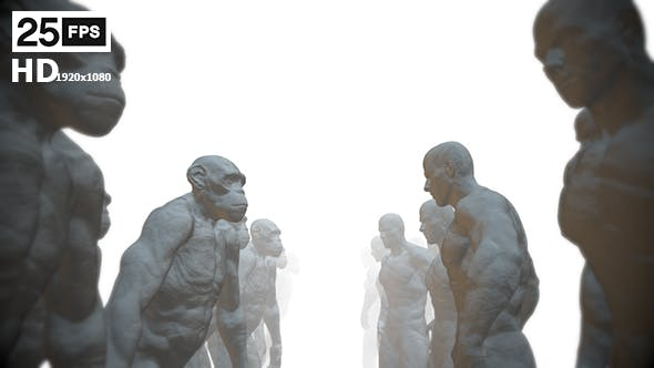 Apes 6 HD