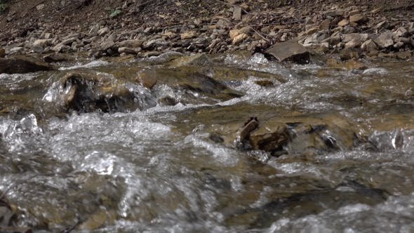 Thumbnail for Pure Stream of Mountain River Among Stony Coasts. Natural Landscape