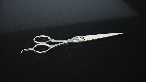 Barbers Scissors Turntable