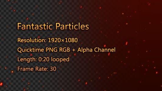 Fantastic Particles