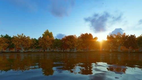 Autum Forest Landscape 3D Render