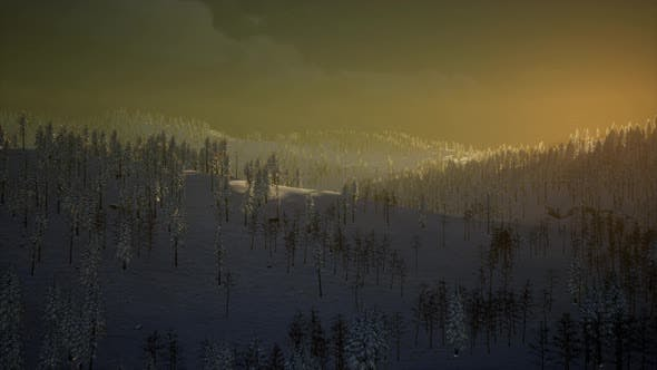 Cover Image for Fog and Snow on Mountain