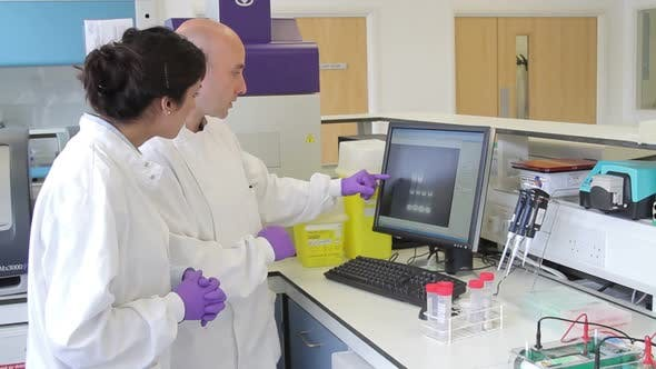 Thumbnail for Two Scientist looking at DNA on computer screen