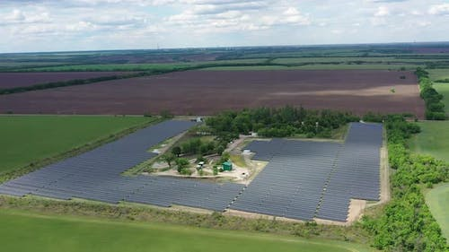 Rows of the Solar Panels in the Field, Environment Friendly Energy Source,