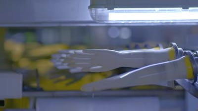 Manufacture of Rubber Gloves Medical Gloves Rotate on a Conveyor