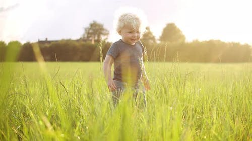 Adventurous Toddler Standing in the Middle of a Field
