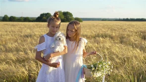 Thumbnail for Glückliche Mädchen im Weizenfeld. Schöne Mädchen in weißen Kleidern im Freien