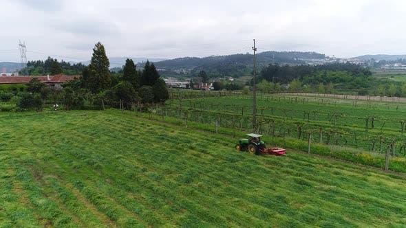 Rural Scenery Farm