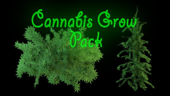 Thumbnail for Cannabis Grow Pack