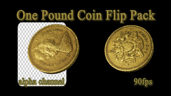 Thumbnail for One Pound Coin Flip Pack