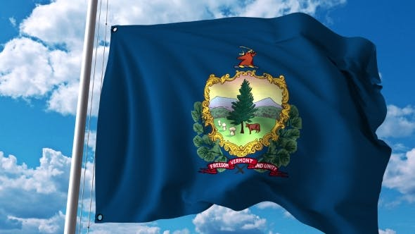 Thumbnail for Waving Flag of Vermont