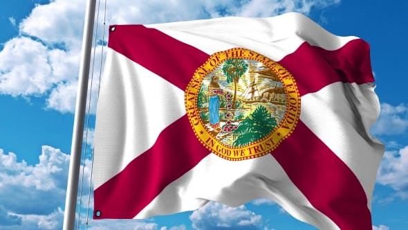 Thumbnail for Waving Flag of Florida