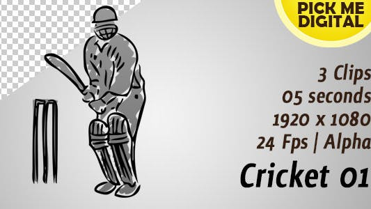 Thumbnail for Cricket 01