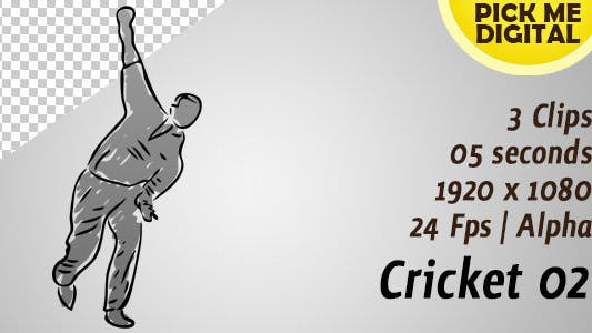 Thumbnail for Cricket 02