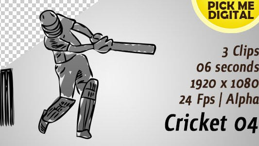 Thumbnail for Cricket 04