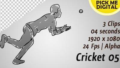 Cricket 05