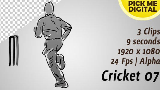 Thumbnail for Cricket 07