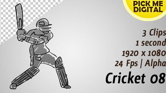 Thumbnail for Cricket 08