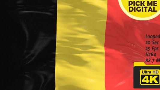 Thumbnail for Belgium Flag 4K