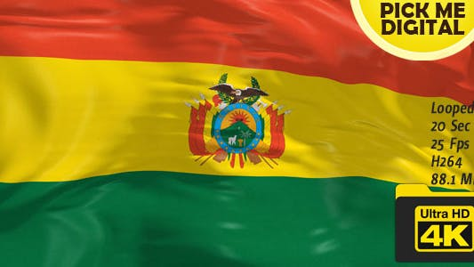 Thumbnail for Bolivia Flag 4K