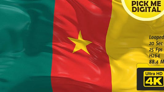 Cover Image for Cameroon Flag 4K
