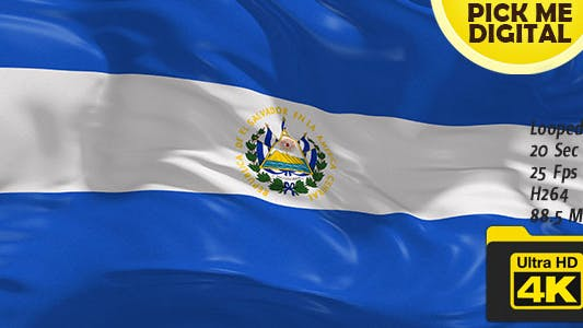 Thumbnail for El Salvador Guinea Flag 4K