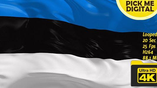 Cover Image for Estonia Flag 4K
