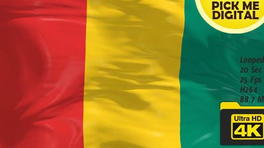 Guinea Flag 4K