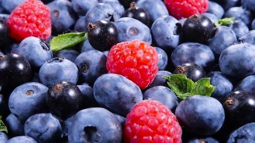 Berries Various Colorful Background Juicy Ripe Summer Berries