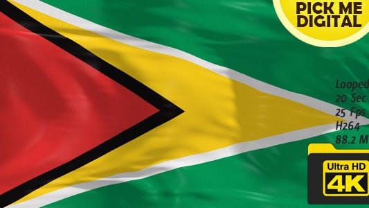 Cover Image for Guyana Flag 4K