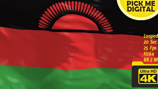 Thumbnail for Malawi Flag 4K