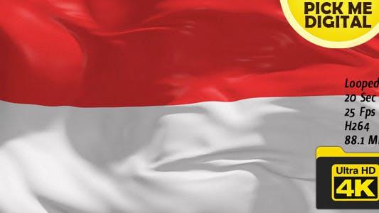 Cover Image for Monaco Flag 4K