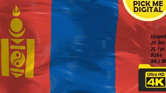 Mongolia Flag 4K