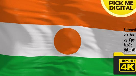 Thumbnail for Niger Flag 4K