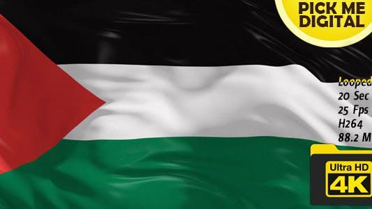 Thumbnail for Palestine Flag 4K