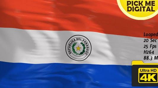 Thumbnail for Paraguay Flag 4K