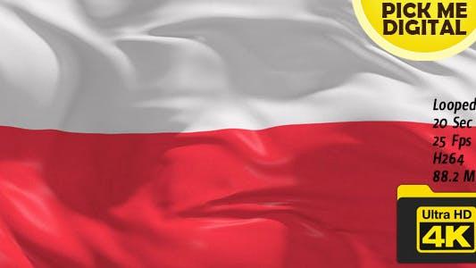 Thumbnail for Poland Flag 4K