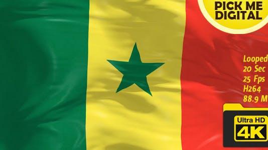 Senegal Flag 4K