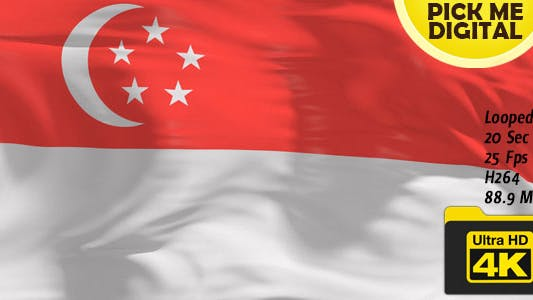 Thumbnail for Singapore Flag 4K