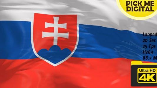 Thumbnail for Slovakia Flag 4K