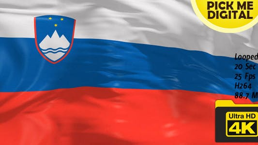 Thumbnail for Slovenia Flag 4K