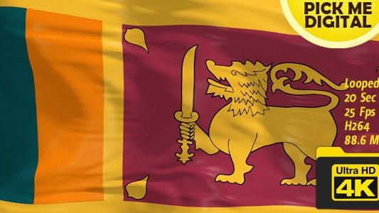 Cover Image for Sri Lanka Flag 4K