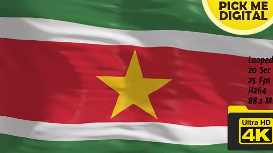 Cover Image for Suriname Flag 4K