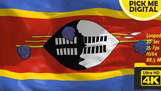 Thumbnail for Swaziland Flag 4K